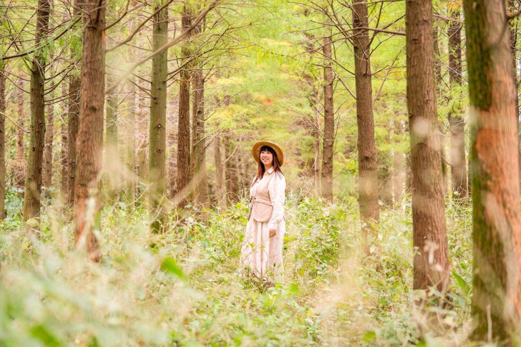 漫步在落羽松秘境,感受秋冬之美。( 圖. 林玉偉)