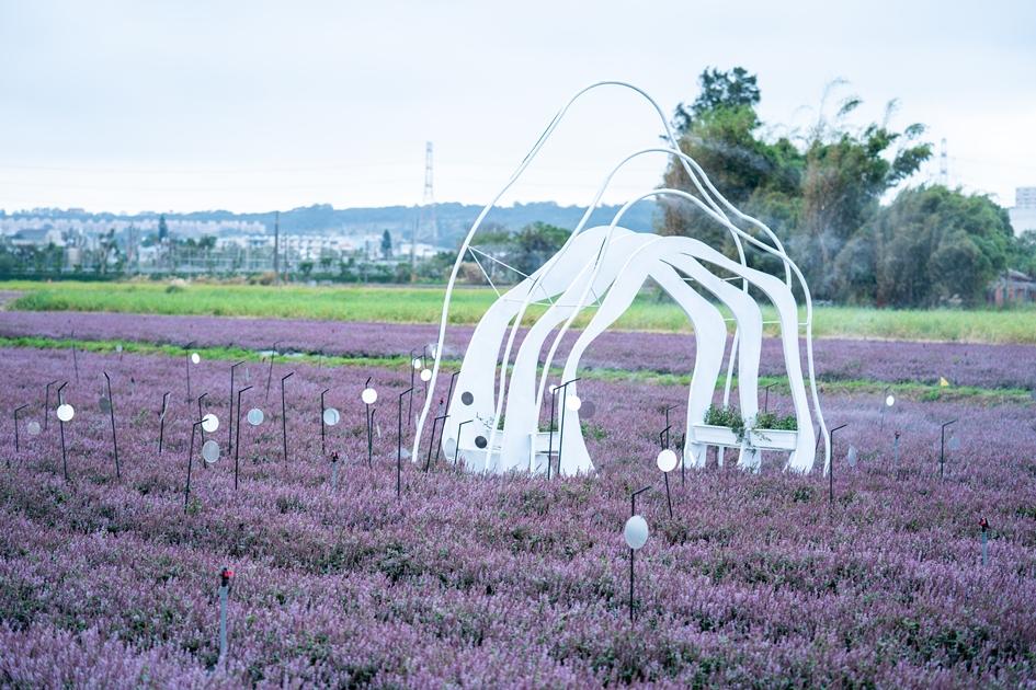 今年的桃園仙草花節 以「微見仙境」為主題 , 結合花海與藝術造景之美。( 圖. 林玉偉 )