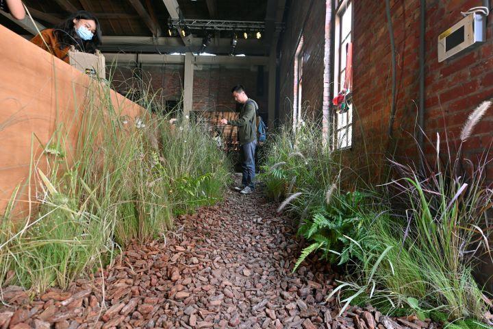 一入場之後充滿雜草石頭的小徑,引導進入考古現場。(圖.陳思明 攝影)